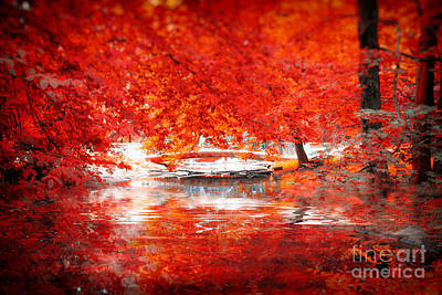 Autumn 2 Print by SK Pfphotography