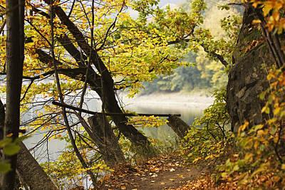 Autumn 9 Print by Dominika Aniola