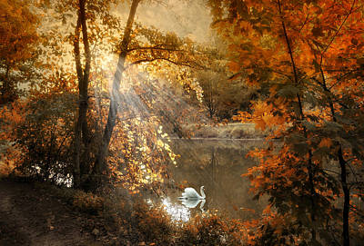 Autumn Afterglow Print by Jessica Jenney