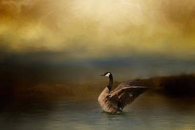 Goose Photograph - Autumn Afternoon Splash by Jai Johnson