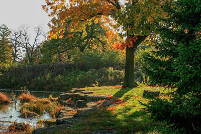 Autumn Along Deer Creek In Forest Park Print by Garry McMichael