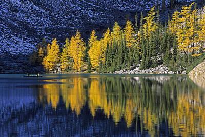 Photograph - Autumn, Alpine Larch Trees, Lake Agnes by John Sylvester