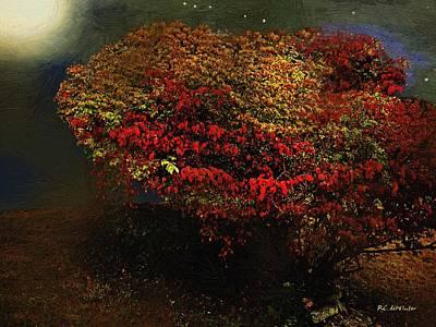Burning Bush Digital Art - Autumn Approaches by RC deWinter