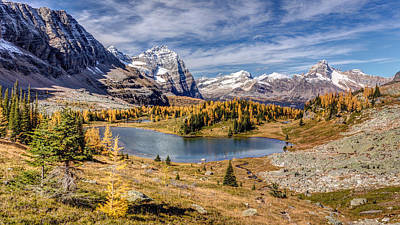 Autumn At The Opabin Plateau Print by Pierre Leclerc Photography