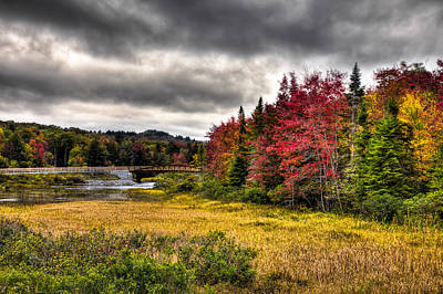 Autumn At The Tobie Trail Bridge Print by David Patterson