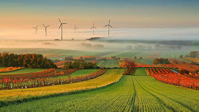 Perspective Photograph - Autumn Atmosphere In Vineyards by Matej Kovac