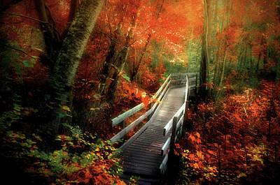 Walkway Digital Art - Autumn Boardwalk by Tara Turner