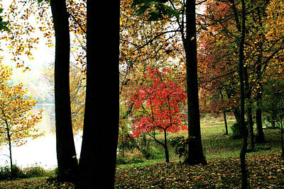 Autumn By The Lake Print by Douglas Barnett