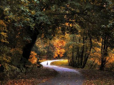 Waterfowl Digital Art - Autumn Canopy by Jessica Jenney