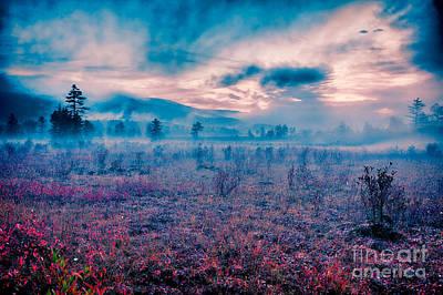 Autumn Fall Colors 10 Print by Dan Carmichael