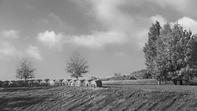 Autumn Hay Bw Print by Bill Wakeley