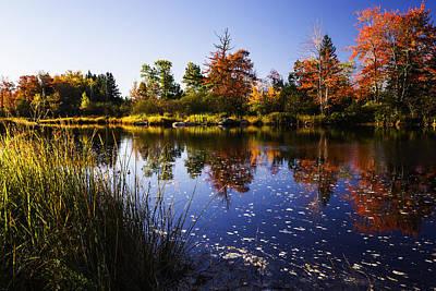 Autumn In Maine Usa Print by Vishwanath Bhat