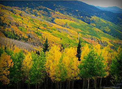 Autumn In The Rockies Print by Aaron Burrows