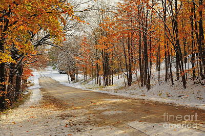Forest Photograph - Autumn Journey In The Snow by Terri Gostola