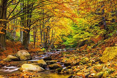 Central Balkan Photograph - Autumn Landscape by Evgeni Dinev