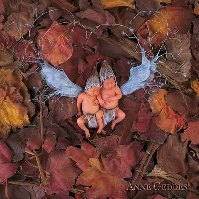 Fairies Photograph - Autumn Leaf Fairies by Anne Geddes