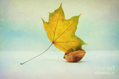Autumn Leaf With Still Life Print by SK Pfphotography
