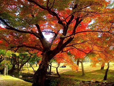 Autumn Leaves 2 Print by Roberto Alamino
