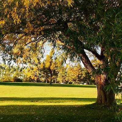 Landscape Photograph - Autumn Light by Cristina Stefan