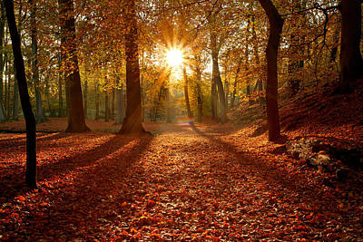 Autumn Magic Print by Roeselien Raimond