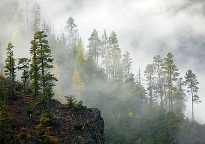 Autumn Mist Original by Mike  Dawson