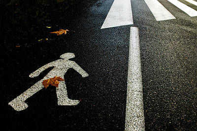 Humour Photograph - Autumn On The Road by Kikroune (christian R.)