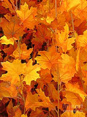 Autumn Orange Print by John Malone
