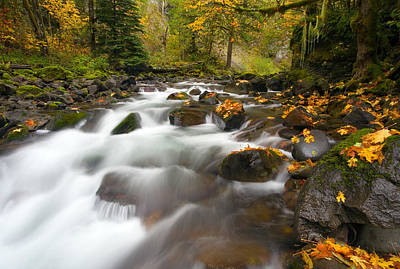 Waterfall Photograph - Autumn Passages by Mike  Dawson