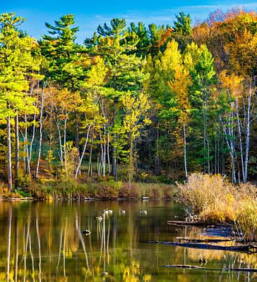 Swamp Photograph - Autumn Pond 3 by Steve Harrington