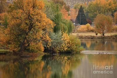 Washington Photograph - Autumn Reflection 41 by Carol Groenen
