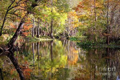 Autumn Reflection On Florida River Print by Carol Groenen