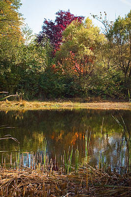 Autumn Photograph - Autumn Reflections by David Patterson