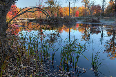 Bantam River Photograph - Autumn River 2015 by Bill Wakeley