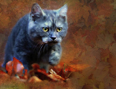 Burmese Python Mixed Media - Autumn Romp Cat Art by Georgiana Romanovna