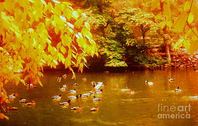 Serenity Oregon Painting - Autumn Serenity by Shasta Eone