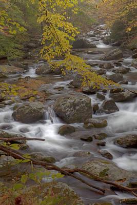Smokey Mountains Photograph - Autumn Smokeys by Jon Glaser