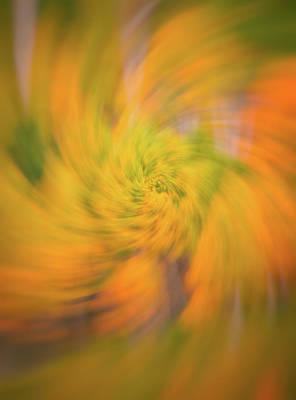 Autumn Spin Print by Darren White