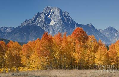 Out West Photograph - Autumn Splendor In Grand Teton by Sandra Bronstein