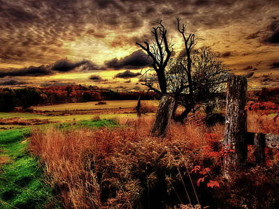 Photograph - Autumn Sunlight by Bob Orsillo