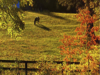 Pasture Scenes Mixed Media - Autumn Sunset Shadows by Bellesouth Studio
