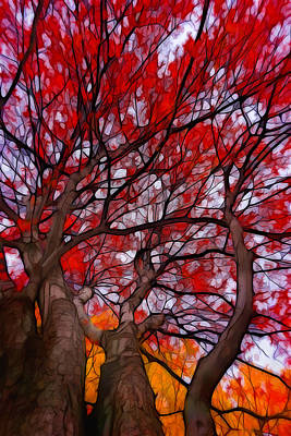 Bright Painting - Autumn Tree Crowns by Lilia D