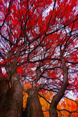 Plein Air Digital Art - Autumn Tree Crowns by Lilia D