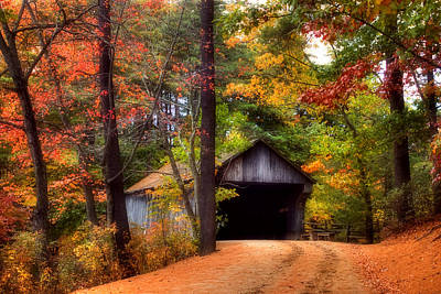 Autumn Wonder Print by Joann Vitali