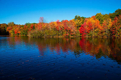 Autumn Scenes Photograph - Autumns Colors by Karol Livote