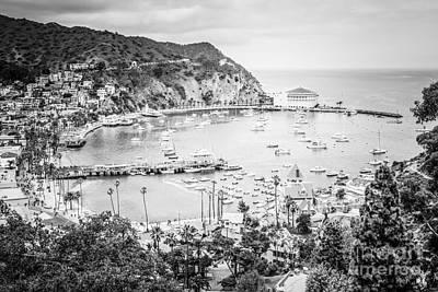 Santa Catalina Island Photograph - Avalon California Black And White Photo by Paul Velgos