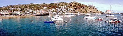 Sailboat Photograph - Avalon Harbor by Michael Moore