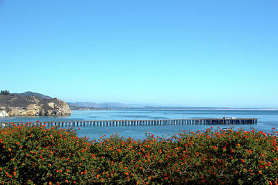 Clear Sky Painting - Avila Beach Pier by Barbara Snyder
