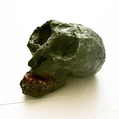 Skull Ceramic Art - Baba Cloanta by Dann