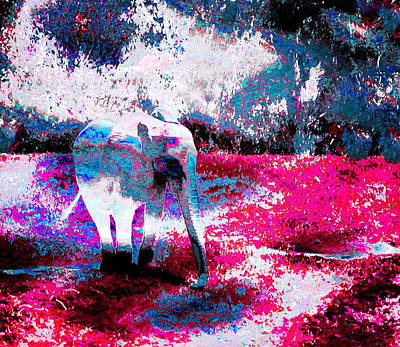 Surreal Photograph - Baby Elephant In Blue And Magenta by Abstract Angel Artist Stephen K