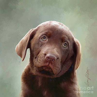 Chocolate Labrador Retriever Digital Art - Baby Molly B by Bon Fillpot